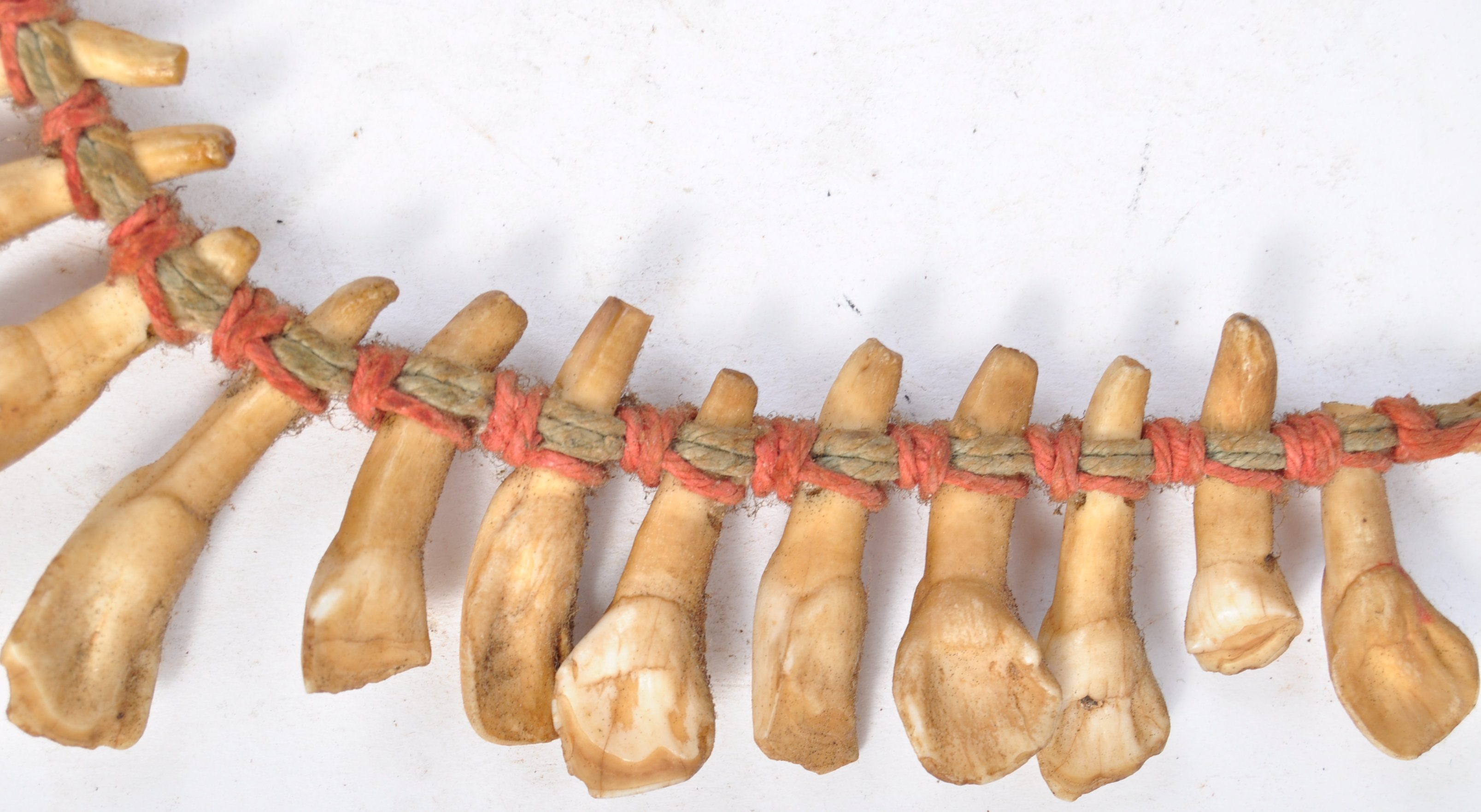 TRIBAL ANTIQUITIES - 19TH CENTURY AFRICAN TOOTH NECKLACE - Bild 4 aus 7